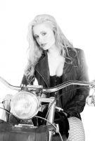 Harley0006