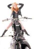 Harley0016