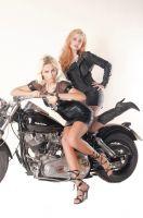 Harley0027