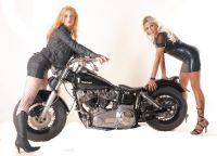 Harley0029