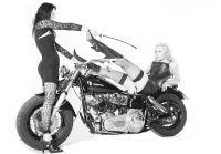 Harley0033